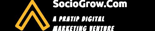 Digital Marketing and Web Designing Agency